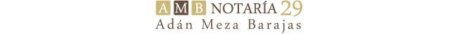 Notaria 29 Meza -Logotipo