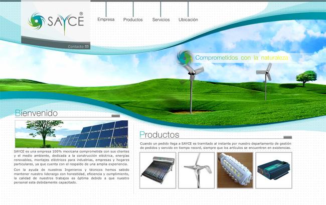 Sayce 2010 - Sitio web